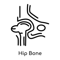 Hip Bone icon isolated on white background , black outline sign, linear modern symbol
