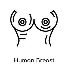Human Breast icon isolated on white background , black outline sign, linear modern symbol