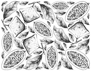Hand Drawn Background of Cambuci and Banana Passionfruit
