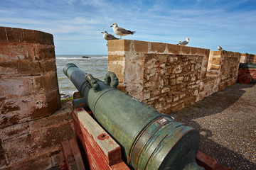 fortified wall of essaouira with cannon Fototapete