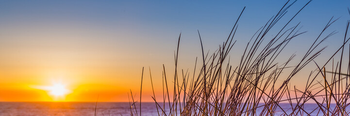 Sunset at the beach of island Texel in the Netherlands Wall mural