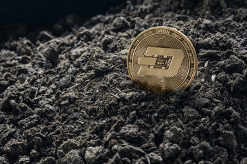 Golden Dash coin in concept coming from the soil. Dash is a one currency. of cryptocurrency.