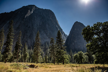 Yosemite National Park california Usa. Picturesque beautiful landscape great colors in Yosemite Valley. atmospheric light with trees and the mountains in background for hike. relaxing nature wallpaper