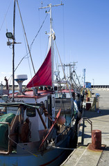 Laesoe / Denmark: Fishing cutters moored at the pier in the small fishing port of Oesterby Havn in April