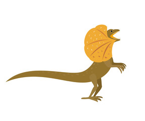 Frilled lizard on white background.