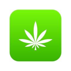 Cannabis leaf icon digital green