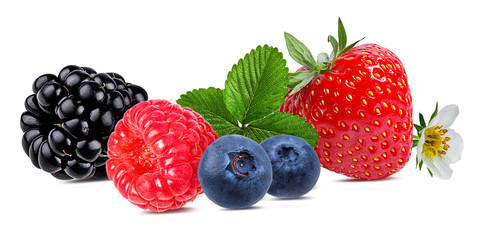 Berries collection. Raspberry,strawberry, blueberry, blackberry  isolated on white.