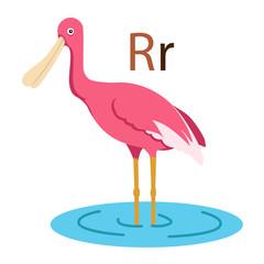 R alphabet vector animal for kid