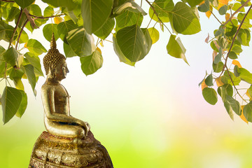 Buddha under Bodhi Leaf on nature background. Sacred Tree for Buddhist or Hindus and Beautiful natural blurred green background with sun rays.