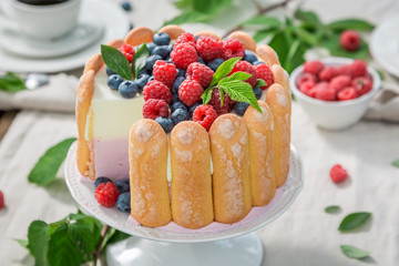 Closeup of yoghurt cake with biscuits and berries in summer