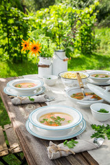 Homemade chicken soup with fresh vegetables in summer garden