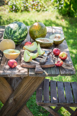 Healthy various of fresh fruits in summer garden