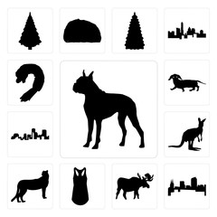 Set of boxer outline on white background, colorado moose tank top cheetah background icons