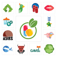Set of homeopathy, cabbage, gavel, butcher shop, aeroplane, catering services, mars, military, facility icons