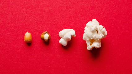 Stages of preparation of corn kernels on red table, top view Wall mural