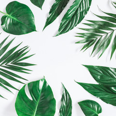 Leaf pattern. Green tropical palm leaves on pastel gray background. Summer concept. Flat lay, top view, copy space, square