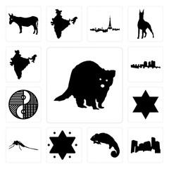 Set of raccoon, minnesota, chameleon, star david, mosquito, yin yang, haiti, india icons