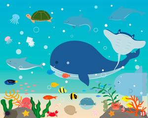 カワイイ海の生き物イラスト