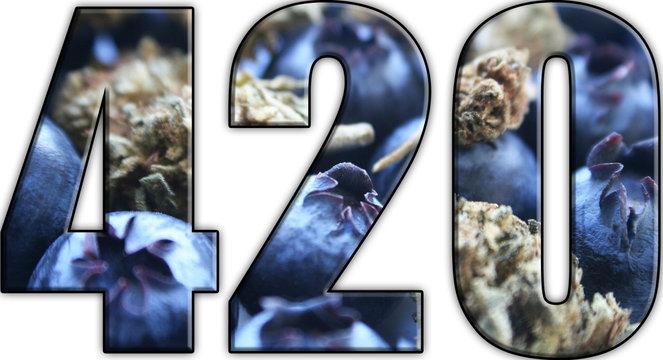 Marijuana 420 Logo With Blueberries & Bud