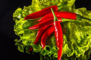 a little hot red pepper on a black background rests on a green leaf salad