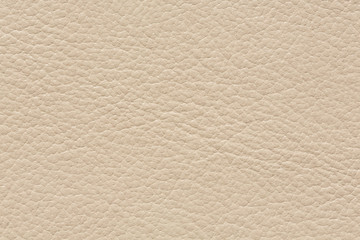 Light leather background with clean surface.