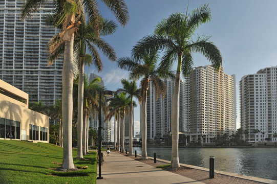 Florida. Miami. Beautiful high-rise buildings on the shore in a bright sunny day
