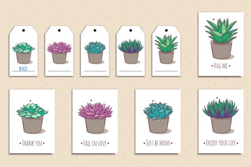 Poster Set of cute postcards and tags with hand drawn succulents. Vector illustration.