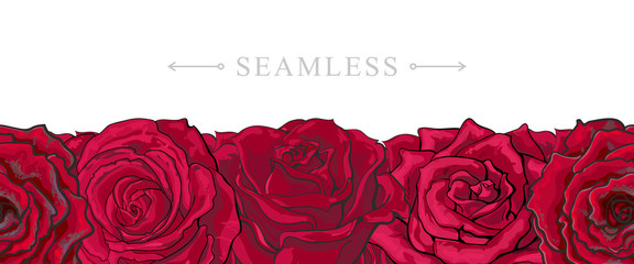 Red roses border seamless pattern with romantic hand drawn flower blooms isolated on white background. Beautiful floral vector illustration with rose blossom in sketch style.