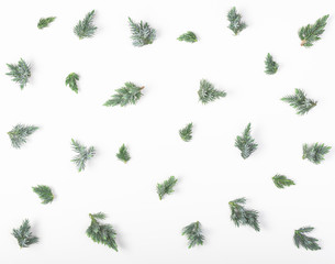 Juniper branches pattern isolated on white background. Flat lay. Top view. Christmas or New year composition.