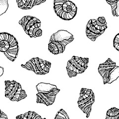 Vector seamless pattern from black seashell on white background. Hand drawn illustration of sketches mollusk sea shells.