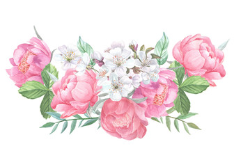 Peonies blooming and leaves isolated on white background. Hand drawn watercolor posy of pink peony buds and white cherry blossom for your design.