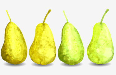bright yellow juicy watercolor pears