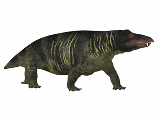 Jonkeria Dinosaur Side Profile - Jonkeria truculenta was an omnivorous therapsid dinosaur that lived in South Africa during the Permian Period.