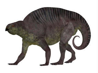 Lotosaurus Dinosaur Side Profile - Lotosaurus adentis was a herbivorous poposauroid dinosaur that lived in China during the Triassic Period.
