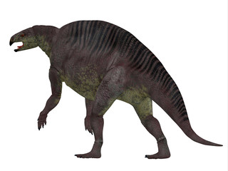 Lotosaurus Dinosaur Tail - Lotosaurus adentis was a herbivorous poposauroid dinosaur that lived in China during the Triassic Period.