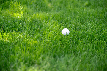 close up view of white golf ball on green lawn