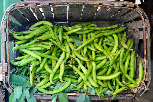 Crate of green fava beans at a French farmers market