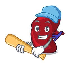 Playing baseball spleen character cartoon style