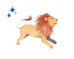 十二星座 獅子座