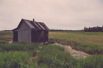 Summer landscape of Sakhalin island. Toned