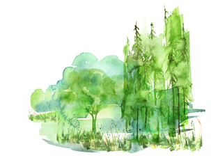 Watercolor painting, picture, 