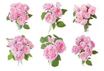 beautiful roses flowers bunch set isolated on white background