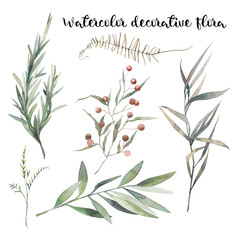 Watercolor decorative floral set. Hand painted botanical elements: plants, grass, berries, fern, leaves. Natural objects isolated on white background