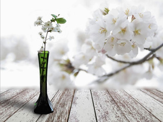 variation on a spring theme with a small, white cherry tree and backgrounds