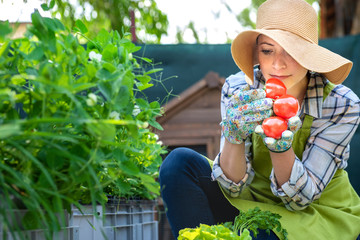 Beautiful young small business farmer smelling freshly harvested tomatoes in her garden. Homegrown bio produce concept. Small business owner.