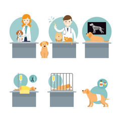 Veterinarian Checkup and Take Care Sick Pets, Cats and Dogs, Clinic and Hospital