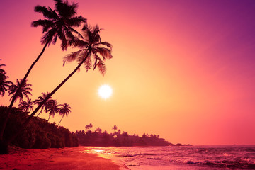 Tropical beach at colorful pink tropic sunset