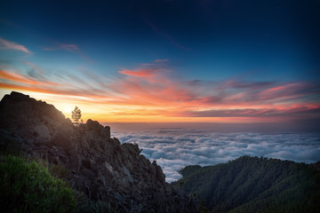 evening landscape in mountains above clouds