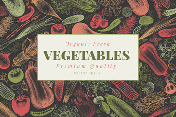 Vegetables hand drawn vector illustration. Retro engraved style banner. Can be use for menu, label, packaging, farm market products.