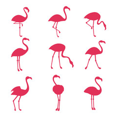 Pink flamingo silhouetes isolated on white background
